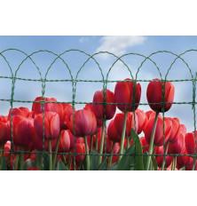 Enrejado Floritor Plastificado Verde